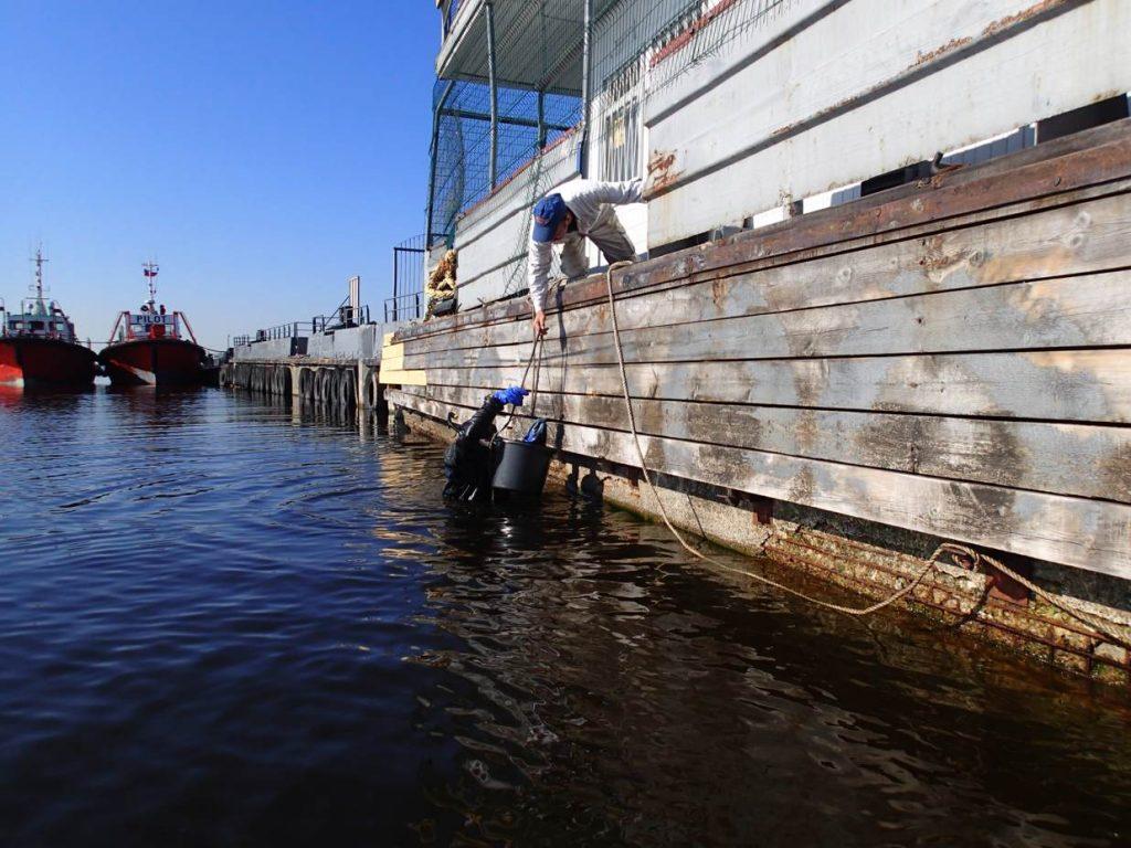 Осмотр и ремонт судна
